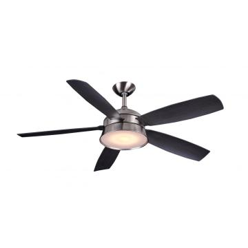 WIFI control intelligence ceiling fan