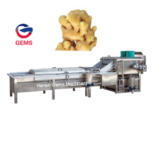 Bean Washing Machine Ginger Washing Peeling Machine
