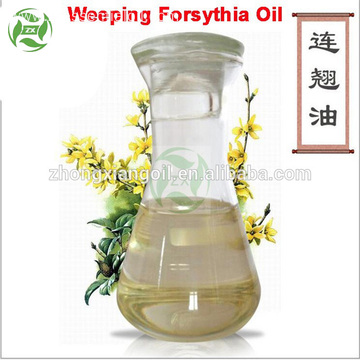 Chinese Herb Oil Weeping Forsythia Essential Oil Wholesale