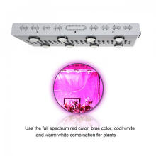 1200W COB LED Grow Light