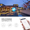 Voice control Wireless Wifi Switch Remote Control Automation Module DIY Timer Smart Home 10A 220V AC 90-250V Universal