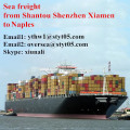 Shantou to Naples Containers shipping rates