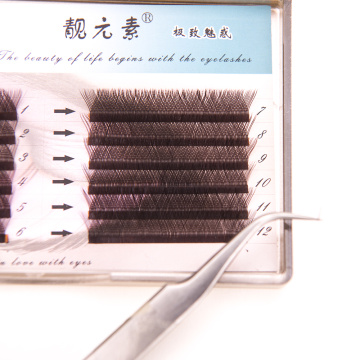 12 Rows Of Individual Eyelash Extensions