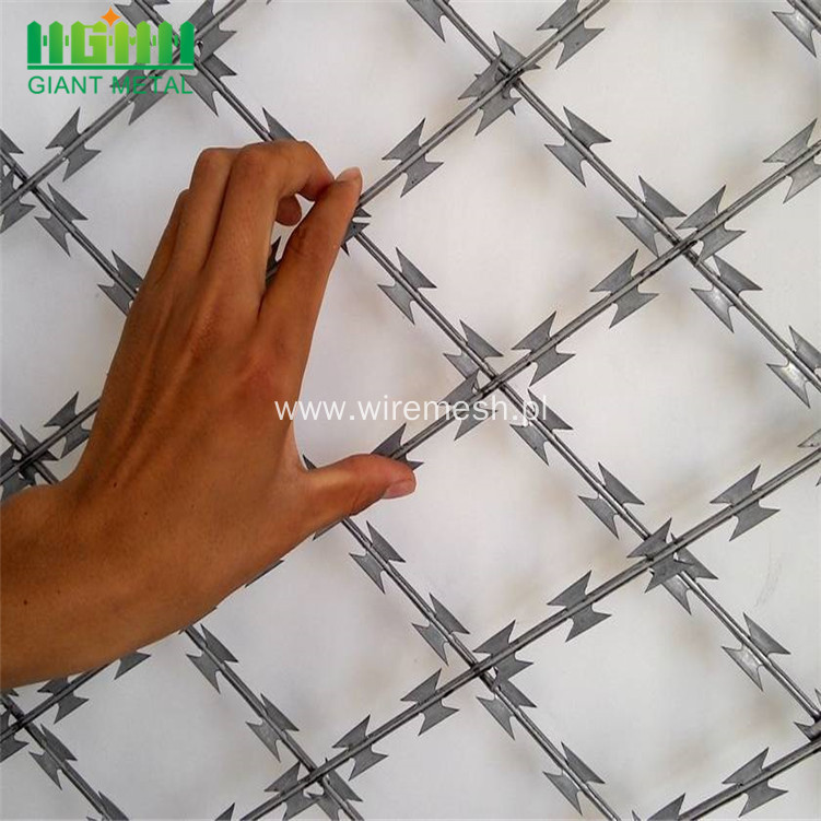 Hot Galvanized Razor Barbed Wires