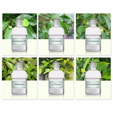 Natural Eucalyptol 1 8-Cineol CAS 470-82-6