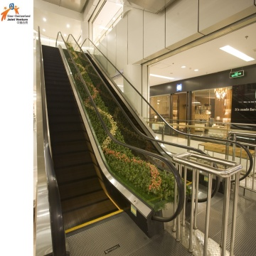 Parallel Cross Escalator for Bank and Shopping Center