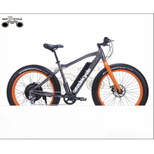 2017 hot sale 500w fat tire electric bike