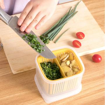 4 Colors Compartmentalized Green Onion Storage Box Kitchen Sealed Box Draining Onion Ginger Garlic Storage Box