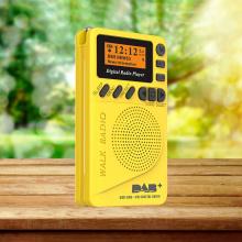 Wireless Radio Speakers Portable FM Radio Music Player Digital Mini Pocket Radio Multifunctional FM Sound Recorder Insert Card