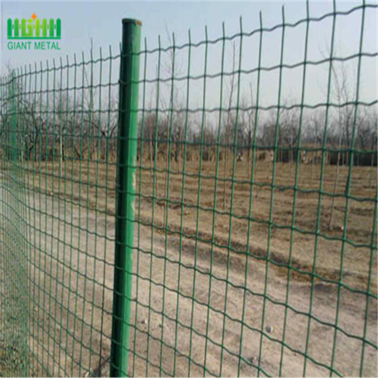 electric fence sheep MESH