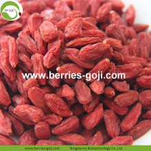 Wholesale Bulk Fruit Low Pesticide Goji Berry