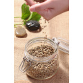 Conventional Hemp Seeds for Sale