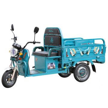 Leisure electric cargo tricycle with passenger seat