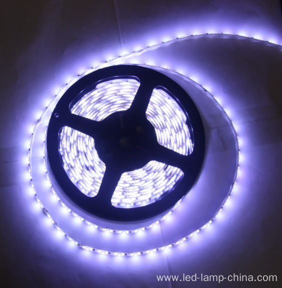 Christmas Light SMD3528 LED Strip Light for Happy Family