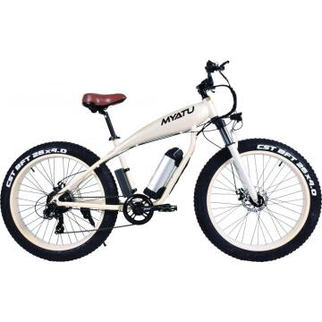 Fat Tires Electric Sports Bike