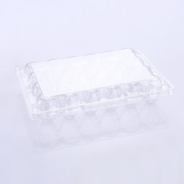 Transparent Cartons Plastic Blister Box For Quail Egg