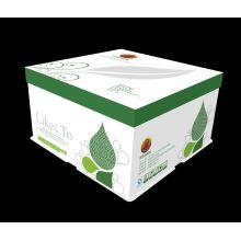 White Cardboard Boxes with Lid
