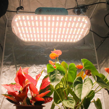 High PPFD 180w Aluminum LED Grow Light Indoor