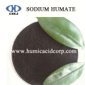 Super Sodium Humate For Oil Drilling