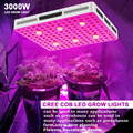 Bloombeast 630w COB LED grow light