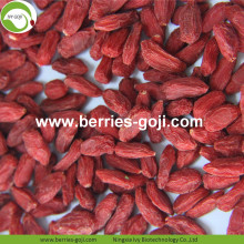 Lose Weight Dried Natural Healthy Tibetan Wolfberry