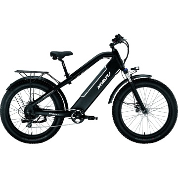 Factory Hidden Battery Electric Fat Bike