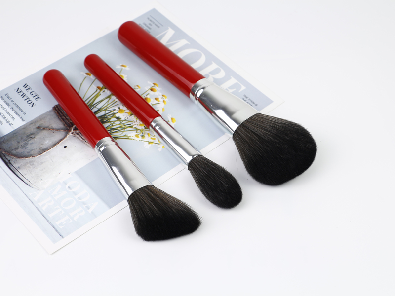 Best Brush Sets for Makeup