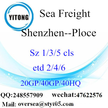 Shenzhen Port Sea Freight Shipping To Ploce