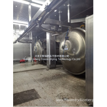 Fig Freeze Drying Machine