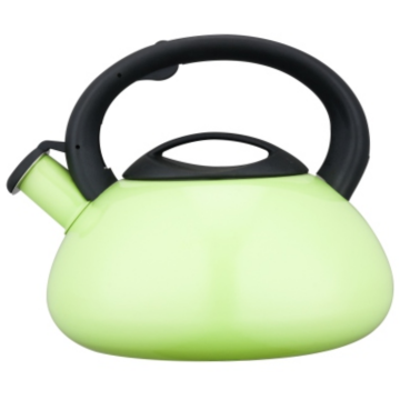 4.5L Stainless Steel Whistling Teakettle with color painting