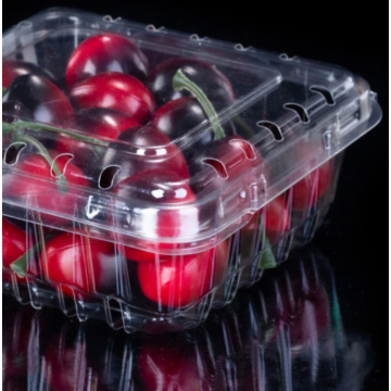 Flip lid fruit packaging box with buckle