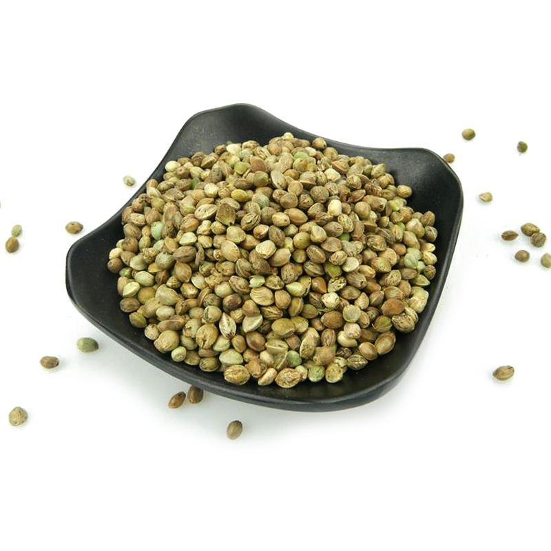 Bulk Dried 99% Pure Raw Big Hemp Seeds