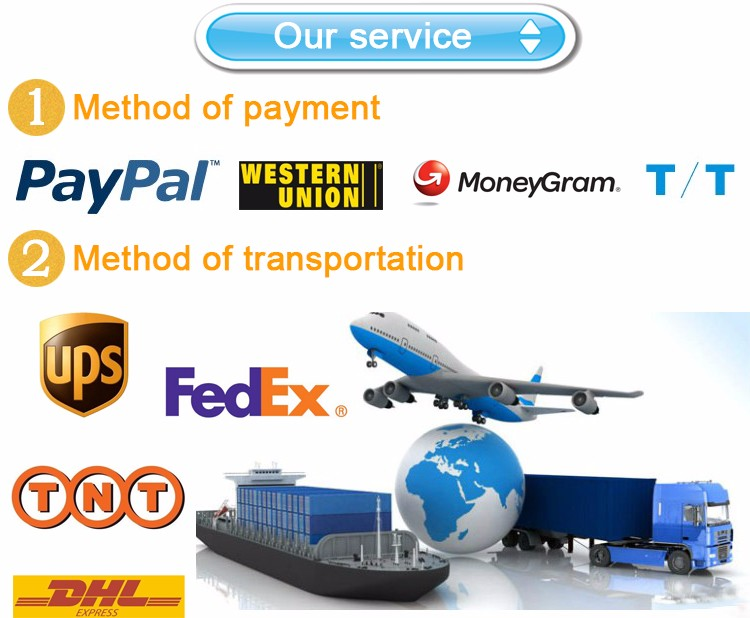 Payment term and shipment way