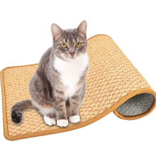 Anti-Slip Scratch Sleeping Mat for Cat Grinding Claws