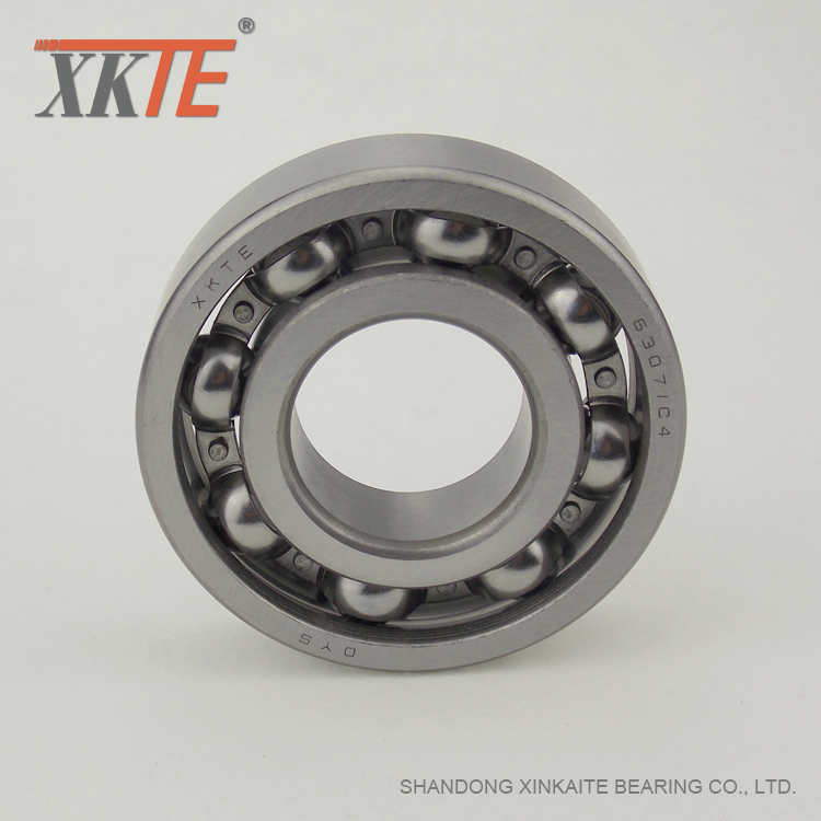 Reinforced Cage Bearing For Conveyor Components Company