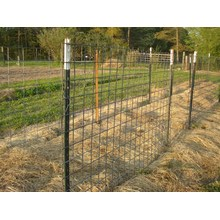 used fence 8 feet t posts for sale