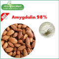 natural Apricot Extract powder Amygdalin