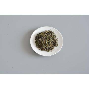 OP chinese green tea wholesale tea factory