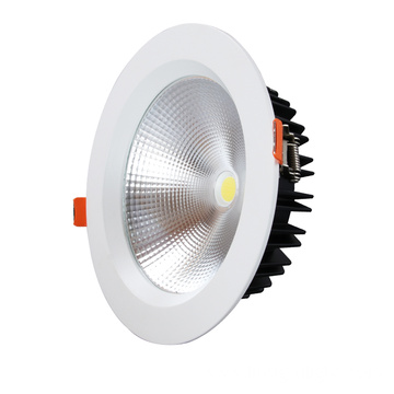 30w High Power Super Bright Led COB Downlight