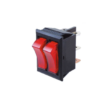 Dual Double Illuminated Rocker Switch