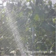 5years lifttime Anti Insect Netting