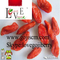 Low Pesticide Goji Berry--180size