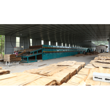 Veneer Roller Dryer in Plywood Making Machine