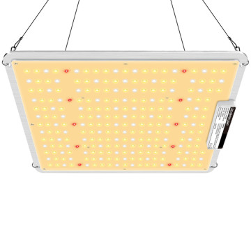 100W Growing Lamp with 250 LEDs