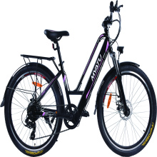 steel frame electric bike
