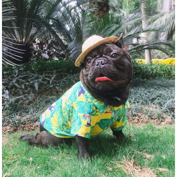 Dog Hawaiian T-Shirt Apparel