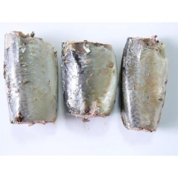 Canned Mackerel Fish in Vegetable Oil And Brine