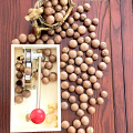 Macadamia Opener Multipurpose Durable Tongs Walnut Tool Non Slip Metal Kitchen Nut Cracker With Handle Peeling Machine