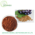 Grape Seed Extract OPC 95% Procyanidins Powder
