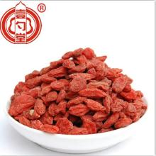 Super owoce Goji Berry Lycium Fruit